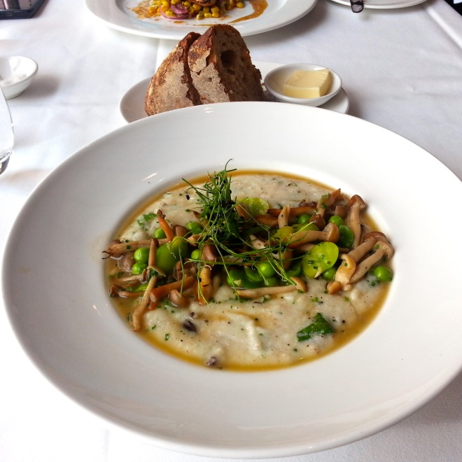 "Fricassee of Wild Mushrooms with ""Upma Polenta"" north end grill floyd cardoz"